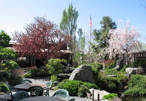 Domo Japanese Country Foods Restaurant June News